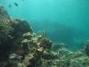 unterwasser19